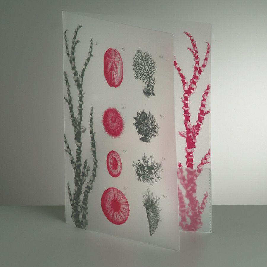 Carpeta personalizada de plástico