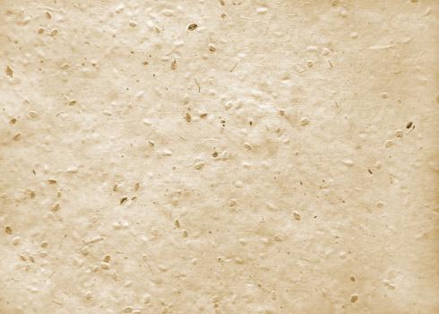 Impresión ecológica con papel semilla