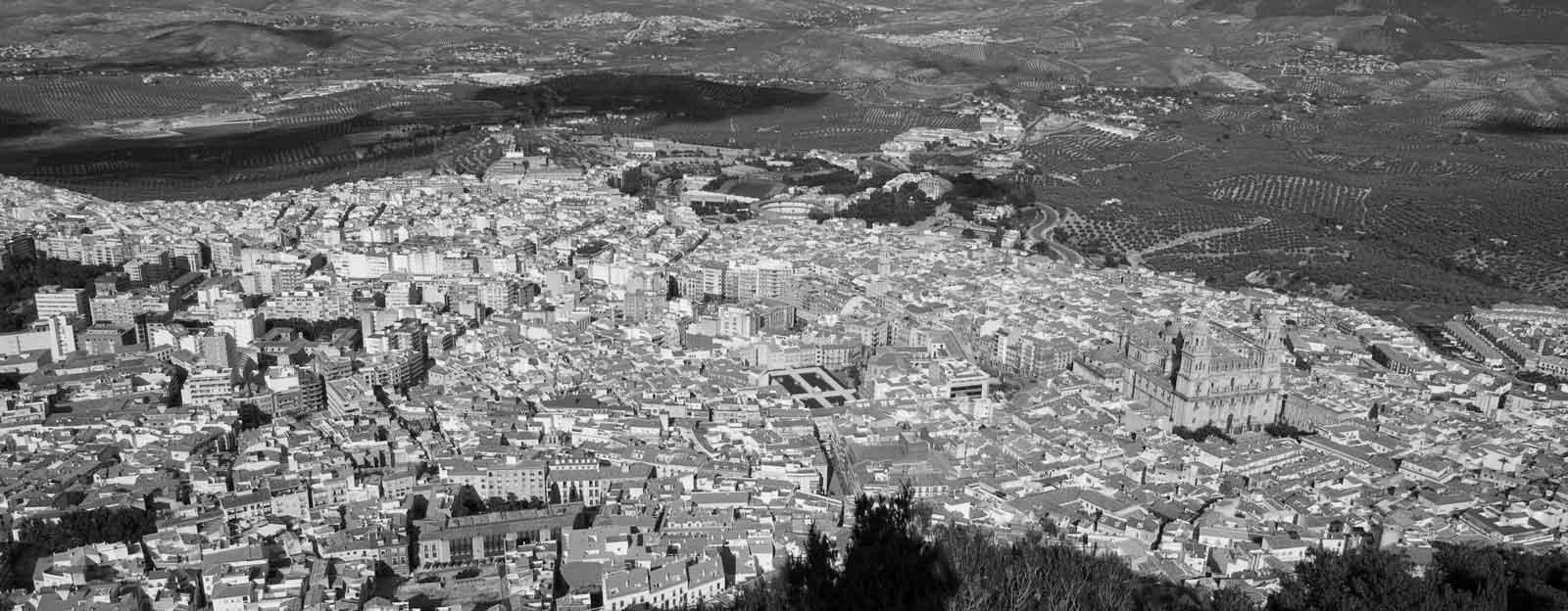 Imprime al mejor precio en Jaén. Colorprinter es mucho más que una imprenta que presta servicio en Jaén, estamos especializados como imprenta para empresas porque también ofrecemos diseño gráfico y asesoramiento publicitario.