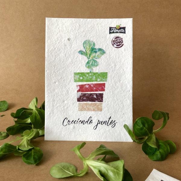 Semillas para tarjetas de visita ecológicas